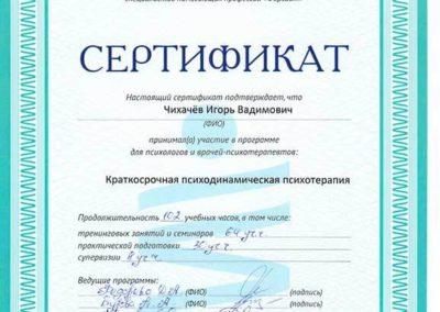 Сертификат Чихачёв 3