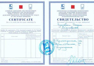 Сертификат Чихачёв 6