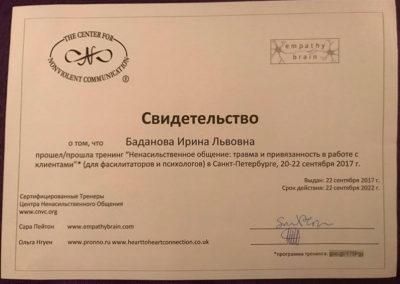 Сертификат Ирина Баданова 15