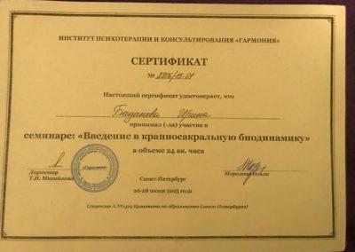Сертификат Ирина Баданова 16