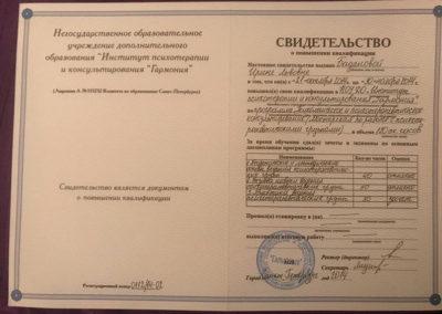 Сертификат Ирина Баданова 7