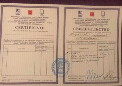 Сертификат Ирина Баданова 8